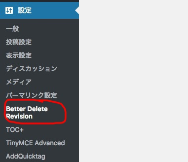 Better Delete Revision データベース最適化