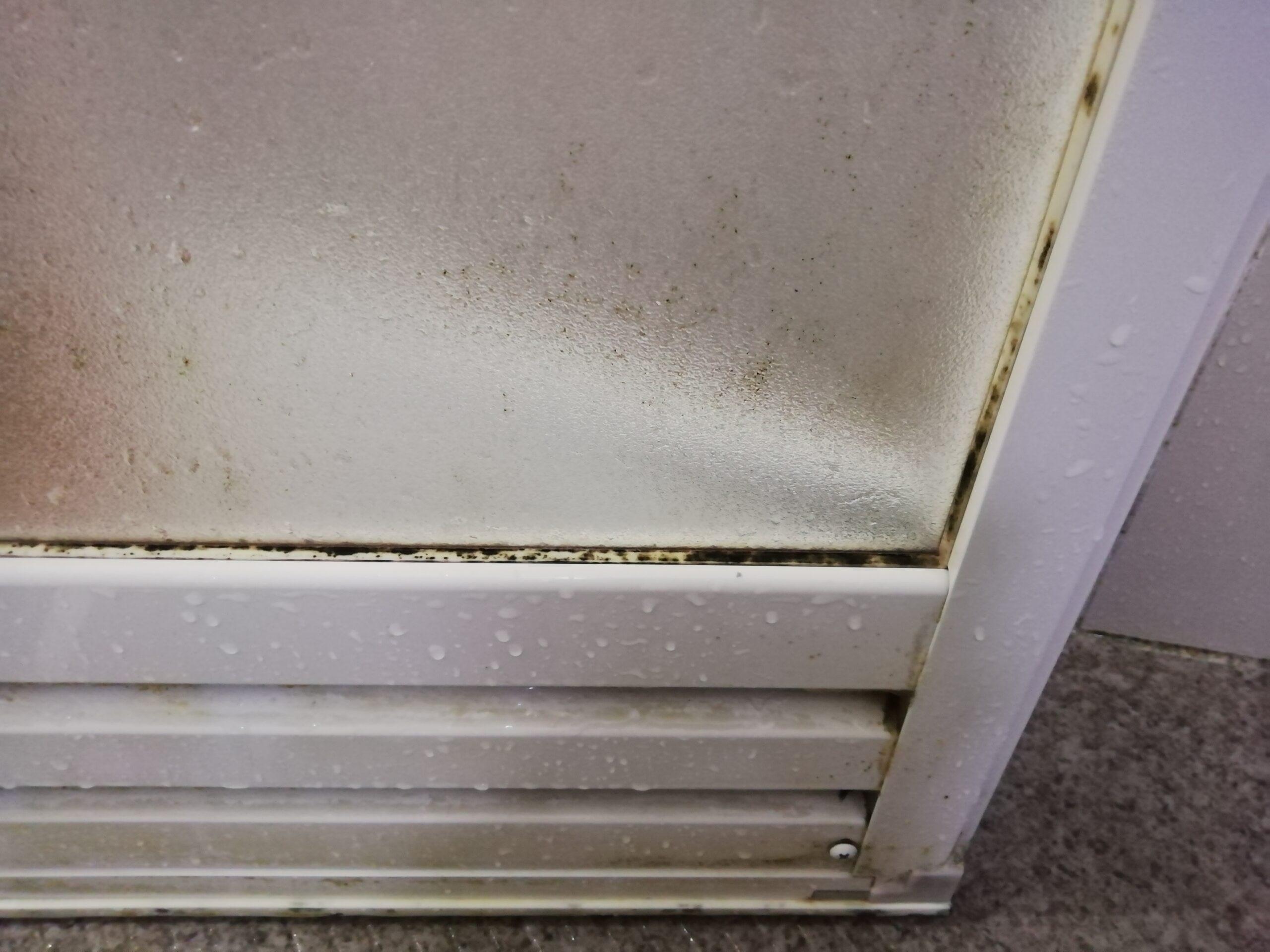 お風呂のドアに発生した黒カビ